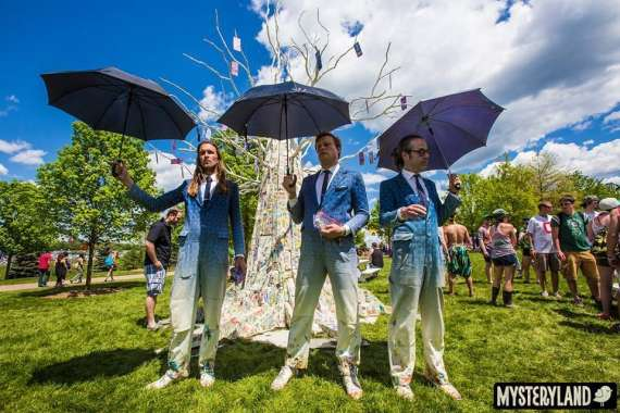 money-tree-Mysteryland-USA