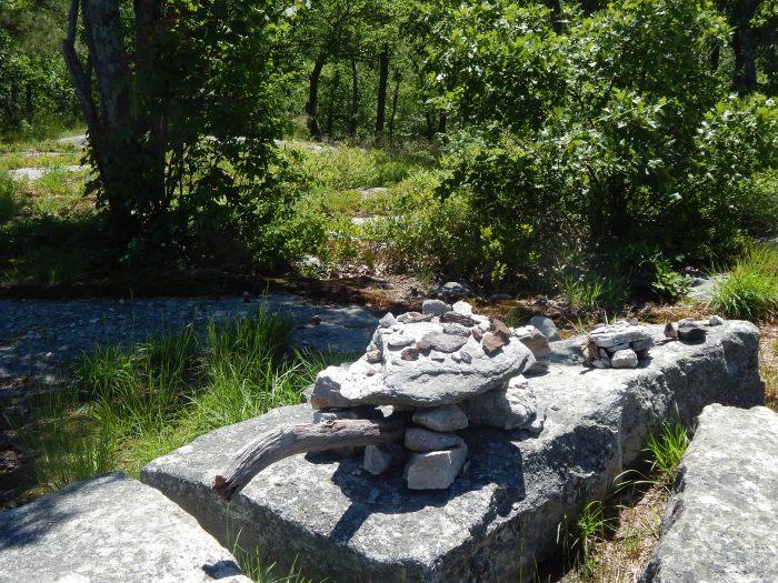 New-Paltz-rock-gardens-shawnagunks