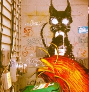 new-paltz-graffiti-art