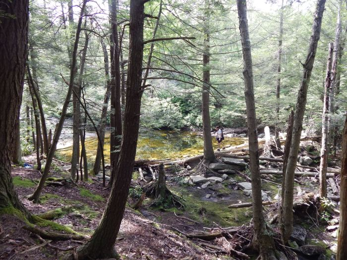 ulster-county-swimming-holes