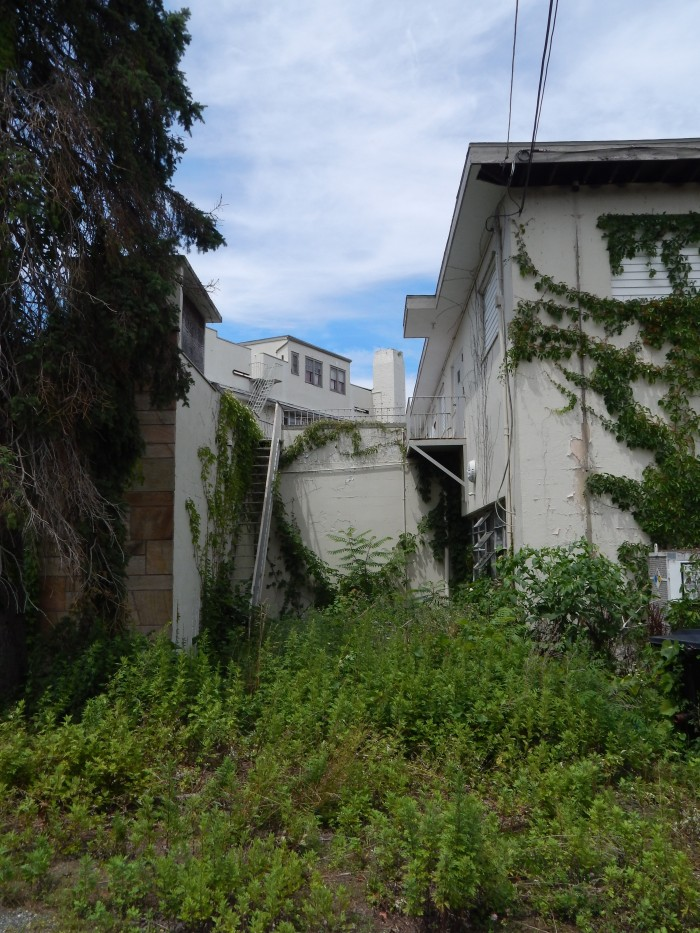 abandoned-nevele