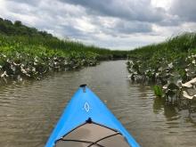 tivoli-bays-kayak