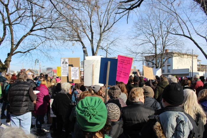 Hudson-women's-march